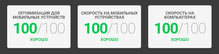 PageSpeed Insights 100 из 100